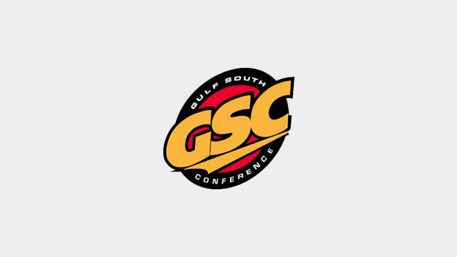 Men's Gulf South Basketball