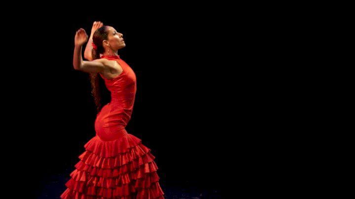Flamenco Is In Danger