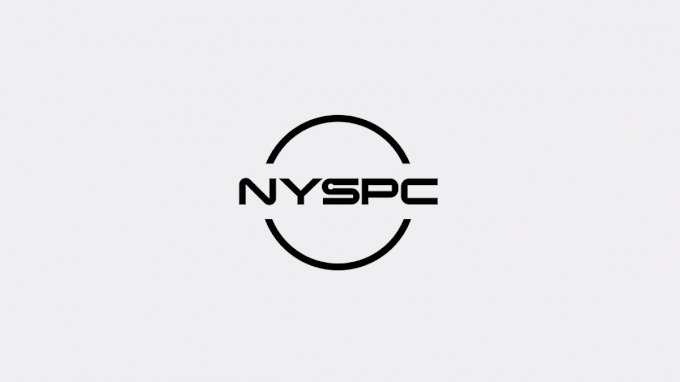 picture of 2021 NYSPC Virtual Event 3