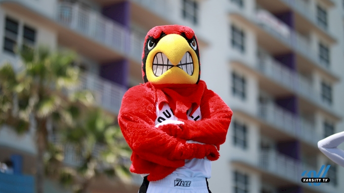 picture of For The Love Of The Mascot