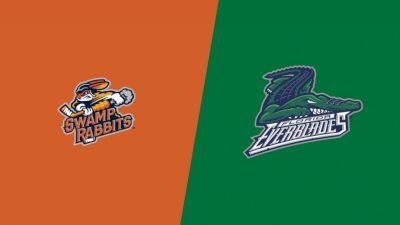 Highlights: Greenville Swamp Rabbits vs Florida Everblades