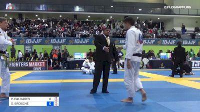 PEDRO PALHARES vs SEBASTIAN BROSCHÉ 2019 European Jiu-Jitsu IBJJF Championship