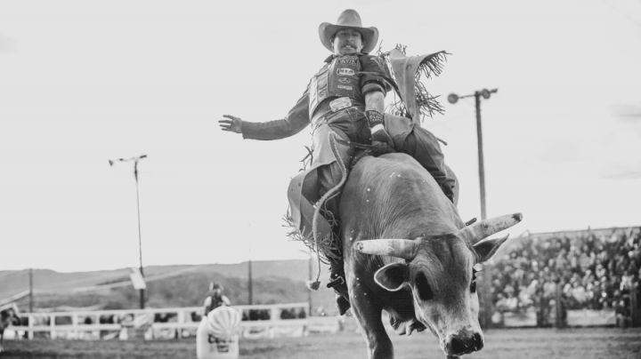 Cleatis Lacy Wild Horse Racing and Bull