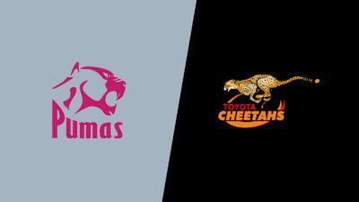 Replay: New Nations Pumas vs Cheetahs | Aug 21