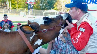 Kissing The Cow: A Milk Bowl Tradition