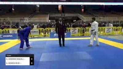 ABRAAO AMORIM MAGALHAES vs ANDRE GOMES REIS 2020 World Master IBJJF Jiu-Jitsu Championship