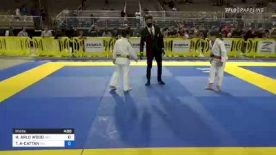 HARLEN ARLO WOOD vs THIAGO RAFAEL AZEVEDO-CATTAN 2021 Pan Kids Jiu-Jitsu IBJJF Championship