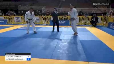 AUSTIN CAINE ORANDAY vs ANDY TOMAS MURASAKI PEREIRA 2020 Pan Jiu-Jitsu IBJJF Championship