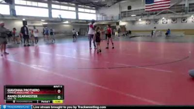 74 lbs Round 3 (4 Team) - Dakota Williams, Ohio vs Addison Hunt, Charlies Angels Pink