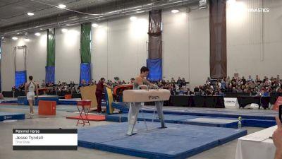 Jesse Tyndall - Pommel Horse, Ohio State - 2019 Canadian Gymnastics Championships