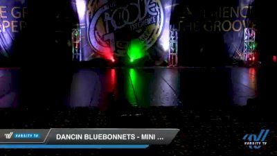 Dancin Bluebonnets - Mini Coed - Pom [2020 Mini Coed - Pom Day 1] 2020 Encore Championships: Houston DI & DII