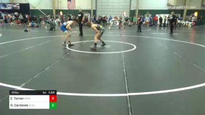 101 lbs Quarterfinal - Cody Tanner, Broomfield vs Nick Dardanes, Bear Cave