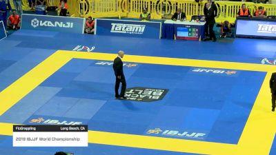 MAX GIMENIS vs RENAN VIEIRA 2019 World Jiu-Jitsu IBJJF Championship