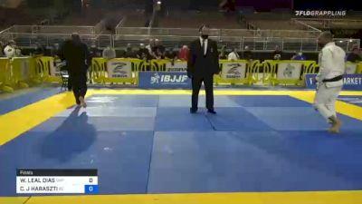 WELLINGTON LEAL DIAS vs CHRISTOPHER J HARASZTI 2020 World Master IBJJF Jiu-Jitsu Championship