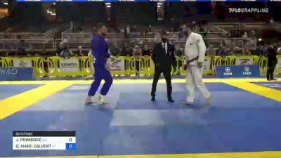 JUSTIN PRIMROSE vs DANIEL MARC CALVERT 2021 Pan Jiu-Jitsu IBJJF Championship