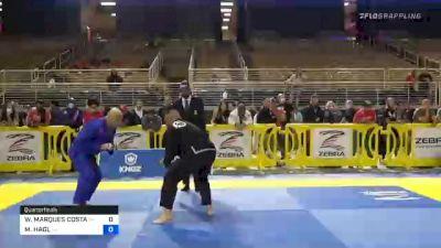 WASHINGTON MARQUES COSTA vs MICHAEL HAGL 2020 Pan Jiu-Jitsu IBJJF Championship
