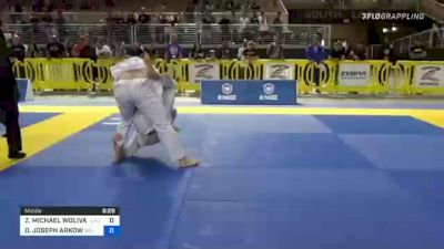 ZACHARY MICHAEL WOLIVAR vs DANIEL JOSEPH ARKOW 2021 Pan Jiu-Jitsu IBJJF Championship
