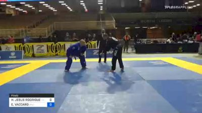HECTOR JESUS RODRIGUEZ vs EVERETT VACCARO 2020 World Master IBJJF Jiu-Jitsu Championship