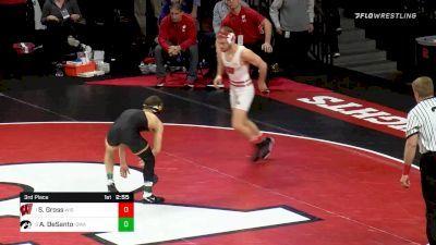 133 lbs 3rd Place - Seth Gross, Wisconsin vs Austin DeSanto, Iowa
