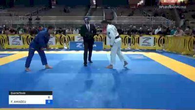 PITER FRANK vs FERNANDO AMADEU 2020 Pan Jiu-Jitsu IBJJF Championship