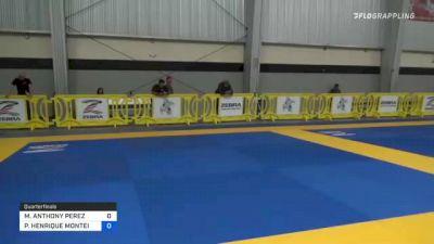 MICHAEL ANTHONY PEREZ vs PEDRO HENRIQUE MONTEIRO 2021 Pan IBJJF Jiu-Jitsu No-Gi Championship