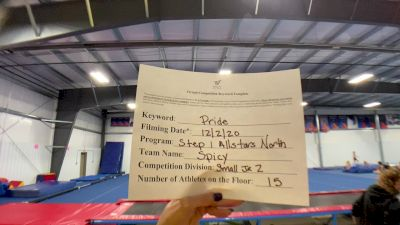 Step One All Stars - North - Spicy [L2 Junior - Small] 2020 WSF All Star Cheer & Dance Virtual Championship