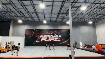 Carolina Flipz - Vixen [L3 Junior - D2 - Small] 2021 The Regional Summit Virtual Championships