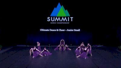 Ultimate Dance & Cheer - Junior Small [2021 Junior Contemporary / Lyrical - Small Semis] 2021 The Dance Summit