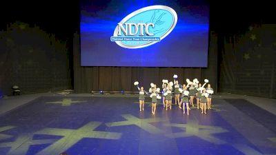 Bishop O'Connell High School [2020 Medium Pom Prelims] 2020 UDA National Dance Team Championship