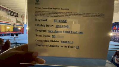 New Jersey Spirit Explosion - X5 [L5 Senior] 2021 Coastal at the Capitol Virtual National Championship