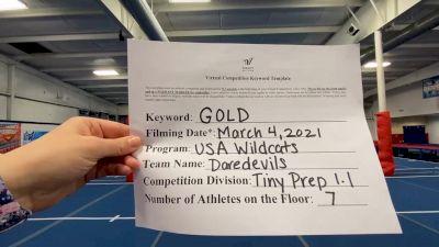 USA Wildcats [L1.1 Tiny - PREP] 2021 Varsity Virtual Competition Series - Prep & Novice I