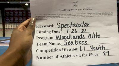 Woodlands Elite OR - Seabees [L1 Youth - Medium] 2021 ATC International Virtual Championship
