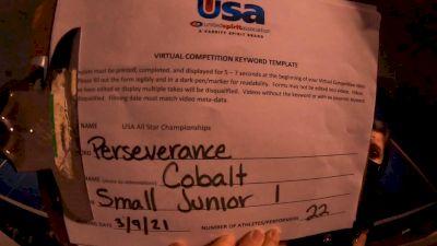 Connect Cheer Northwest - Cobalt [L1 Junior] 2021 USA All Star Virtual Championships