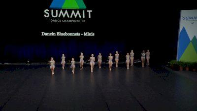 Dancin Bluebonnets - Minis [2021 Mini Contemporary / Lyrical Finals] 2021 The Dance Summit