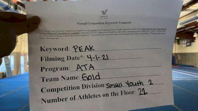 ATA - Gold [L2 Youth - Small] 2021 The Regional Summit Virtual Championships