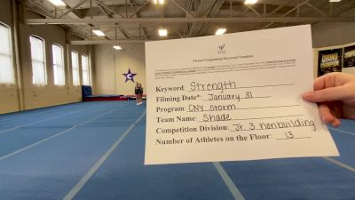 CNY Storm - Shade [L3 Junior - Non-Building] 2021 Varsity All Star Winter Virtual Competition Series: Event II