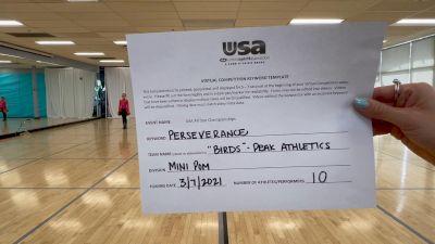 Peak Athletics - Birds [Mini - Pom] 2021 USA All Star Virtual Championships