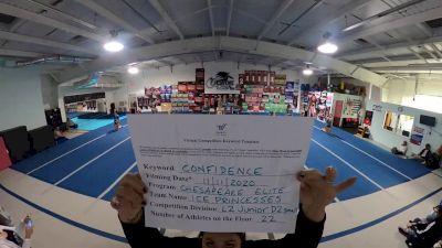 Chesapeake Elite All Stars - Ice Princesses [L2 Junior - D2 - Small] Varsity All Star Virtual Competition Series: Event IV