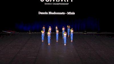 Dancin Bluebonnets - Minis [2021 Mini Pom - Small Finals] 2021 The Dance Summit