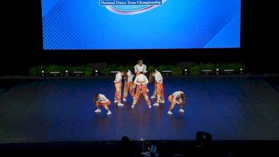 Prima Dance All-Stars - Junior Coed Hip Hop [2021 Junior - Hip Hop Finals] 2021 UDA National Dance Team Championship