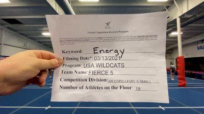 USA Wildcats - FIERCE 5 [L5 Senior Coed - Small] 2021 Beast of The East Virtual Championship