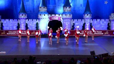 University of Wisconsin [2019 Division IA Pom Semis] UCA & UDA College Cheerleading and Dance Team National Championship