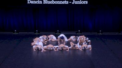 Dancin Bluebonnets - Juniors [2021 Junior Jazz - Large Finals] 2021 The Dance Summit
