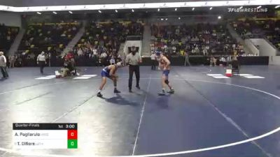 141 lbs Quarterfinal - A.j. Pagliarulo, United State Coast Guard Academy vs Tyler Difiore, Luther College