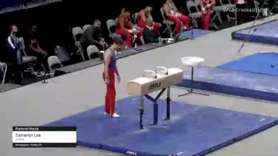 Cameron Lee - Pommel Horse, WOGA - 2021 US Championships