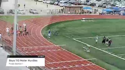 Youth Boys' 110m Hurdles, Finals 1 - Age 17-18