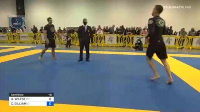 ANDREW WILTSE vs CAMERON GILLIAM 2020 IBJJF Pan No-Gi Championship