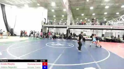 100 lbs Rr Rnd 5 - Amelia Murphy, Wyoming Seminary vs Juliana Alejandro, Aniciete Training Club