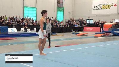 Jesse Tyndall - Floor, Ohio State - 2019 Canadian Gymnastics Championships