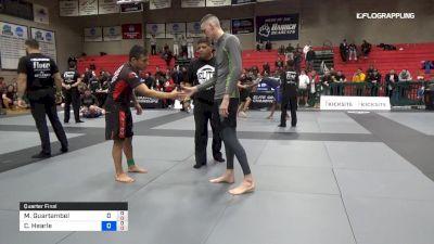 M Guartambel vs C Hearle 2019 Elite Grappling Championships 3